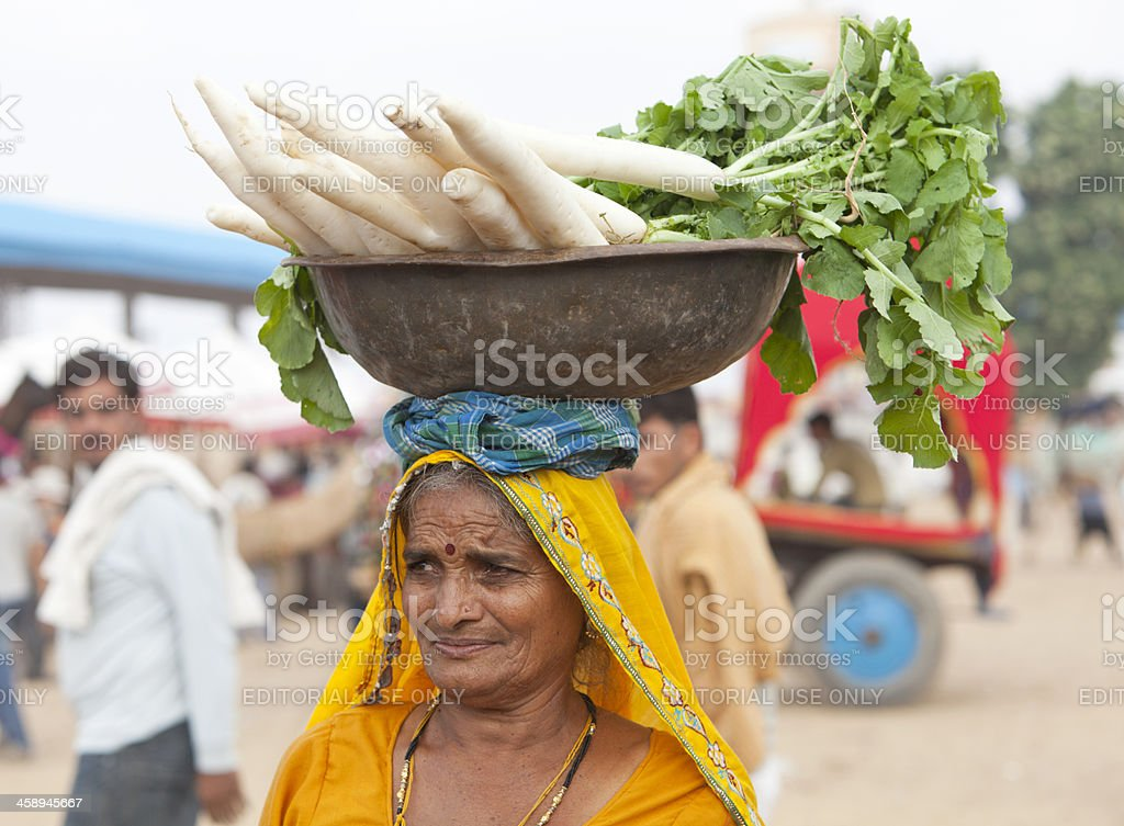 Old Indian woman in yellow selling radishes. Pushkar Rajasthan. royalty-free stock photo