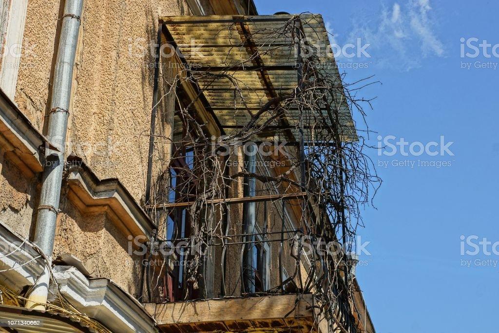 balcón de hierro viejo overgrown con la vegetación seca contra el cielo - foto de stock