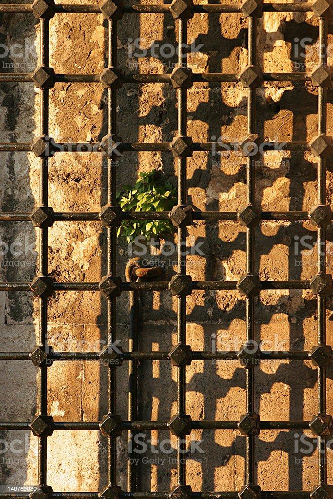 Old iron railing royalty-free stock photo