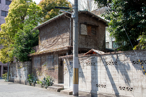 Old Japanese house with dead ivy crawling on the wall