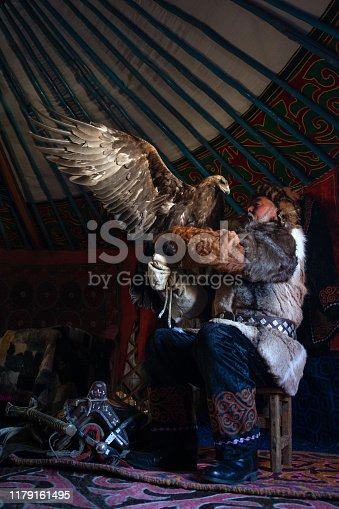 Old kazakh eagle hunter with his majestic golden eagle indoors in dark traditional kazakh ger. Ulgii, Western Mongolia.
