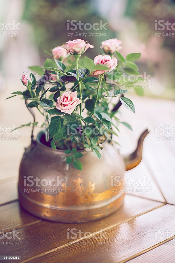 Old kettle and a bouquet of roses stock photo