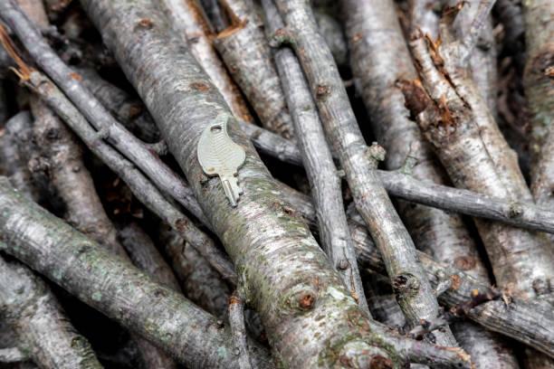 llaves antiguas con un fondo rústico de madera - carlosanchezpereyra fotografías e imágenes de stock