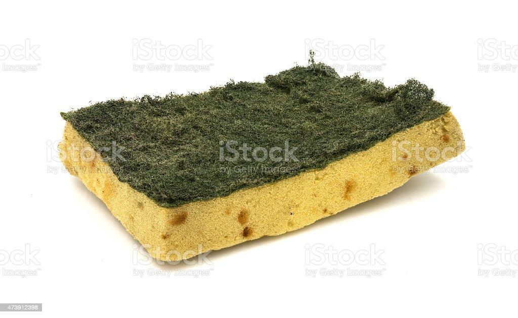 Old kitchen sponge on white background. stock photo