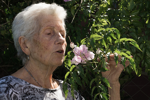 old lady smelling a pink flower in the garden of her house