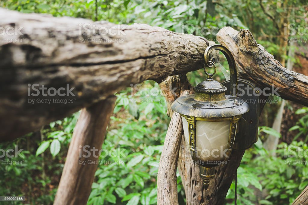 Old lamp hang on timber in forest. royalty-free stock photo