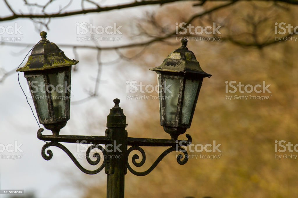 Old lamp in forest stock photo