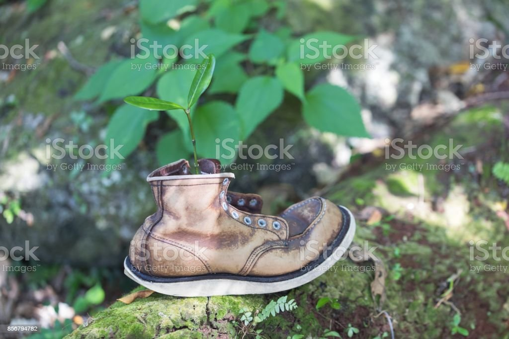 261c5259e83 Old Leather Boots And Futaba Stock Photo & More Pictures of ...