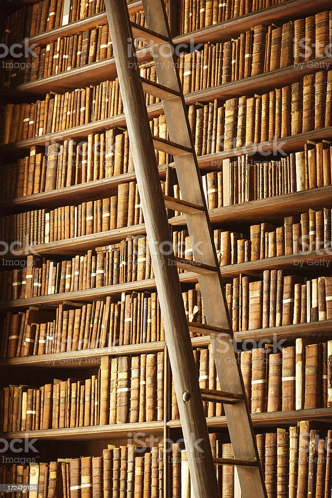 old library with books and ladder