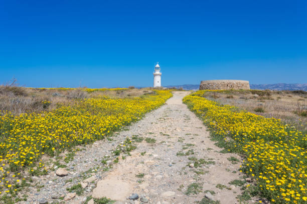 Old lighthouse in Pafos, Cyprus stock photo