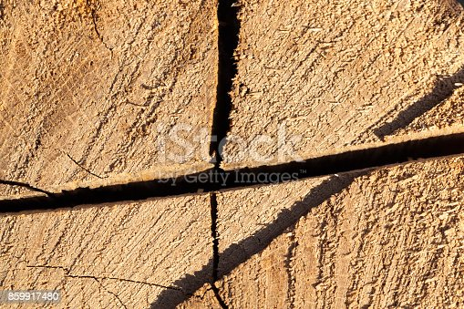 istock Old logs, close-up 859917480
