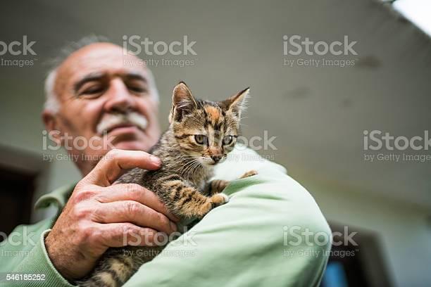 Old man and a cat picture id546185252?b=1&k=6&m=546185252&s=612x612&h=fdnbdvbxedsm ljq4jwbaxyab9ov4tmwnlggq7r4ugc=