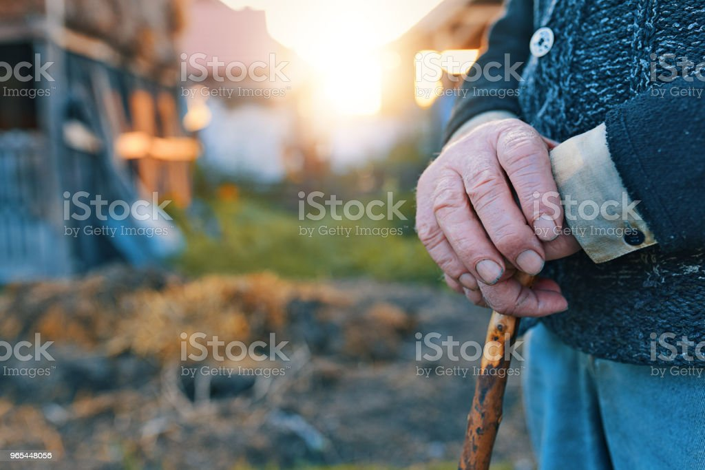 Old man hands holding a walking cane zbiór zdjęć royalty-free