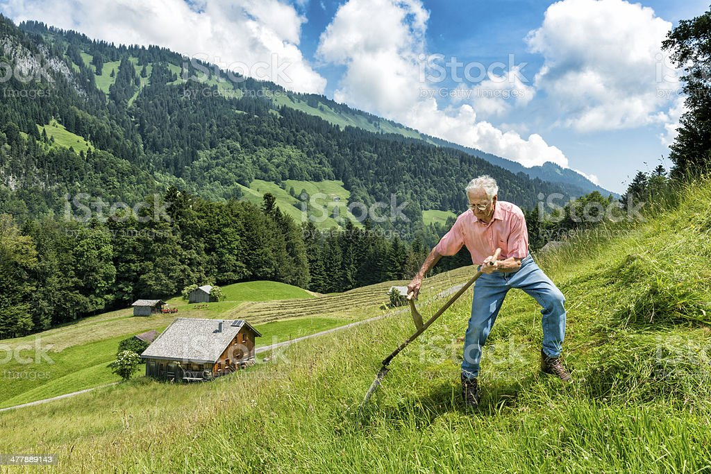 old man mowing with scythe in the mountains stock photo