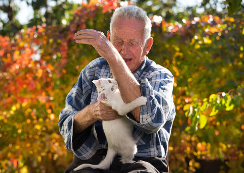 istock Old man playing with cat 868195422