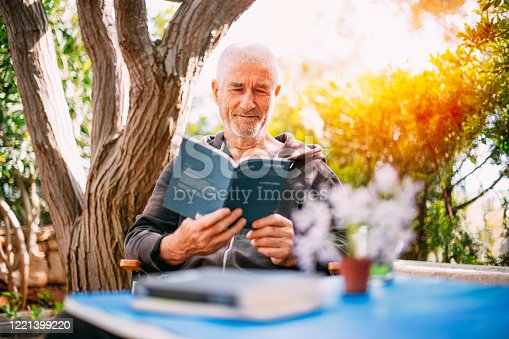 Old Man Reading a Book in the Garden