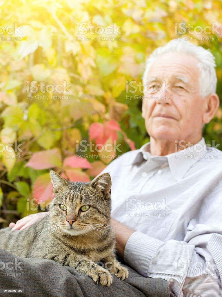 Old Man With Cat Stock Photo - Download Image Now - iStock