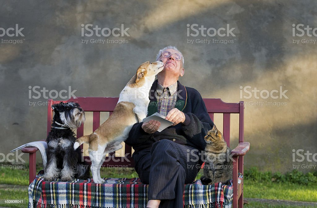 Old man with pets stock photo