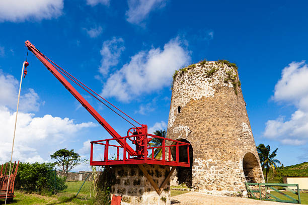 old man crane, à la barbade - saint nicolas photos et images de collection