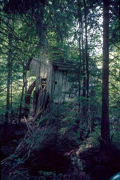alt mühle im schwarzwald, deutschland - die brüder grimm stock-fotos und bilder