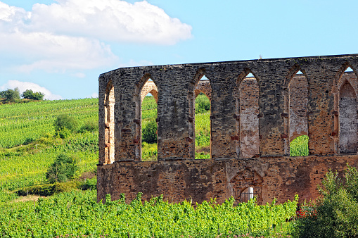 old monastery ruin in Stuben at mosel river