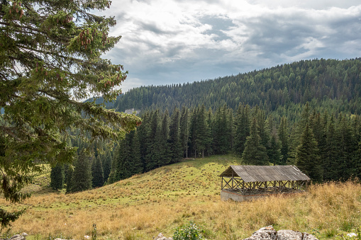 Old mountainside log cabin in Bucegi National Park