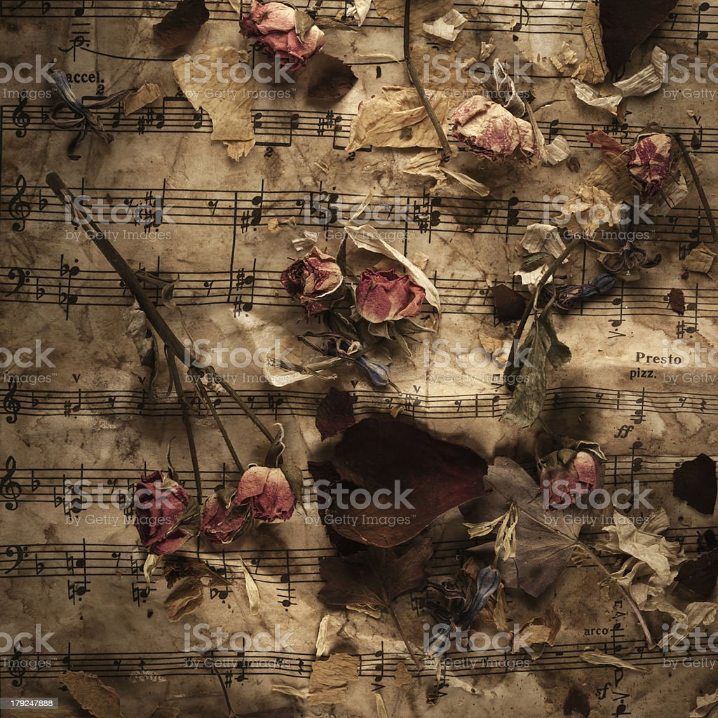 Old music notes with dry roses stock photo