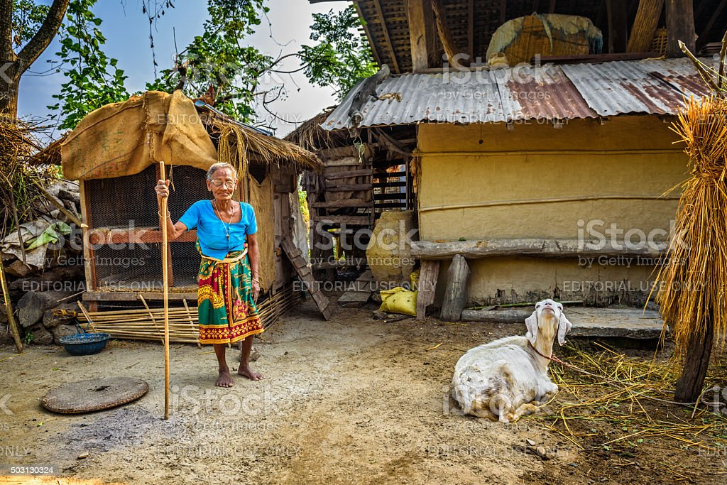Old nepalese woman in the backyard of her house stock photo