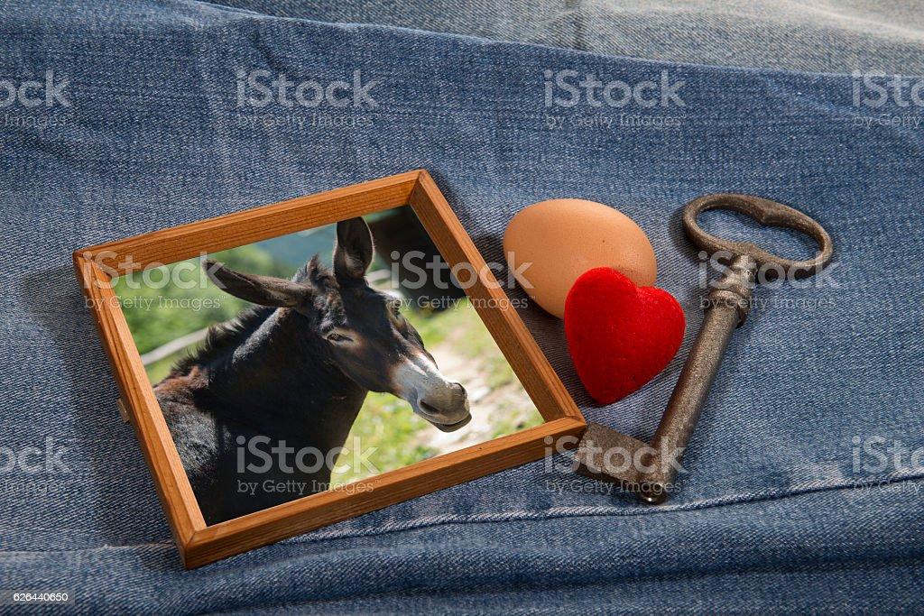Old (key), New (husband, donkey), Borrowed (egg), Blue (jeans) - foto de stock
