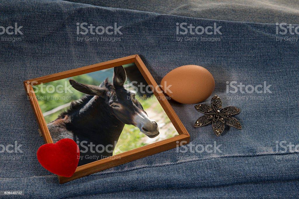 Old (brooch), New (husband, donkey), Borrowed (egg), Blue (jeans) - foto de stock