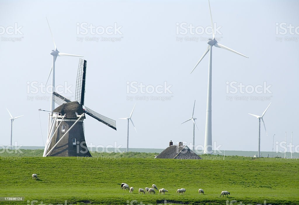Old & New Energy: grazing Sheep near Dyke at Eemshaven stock photo