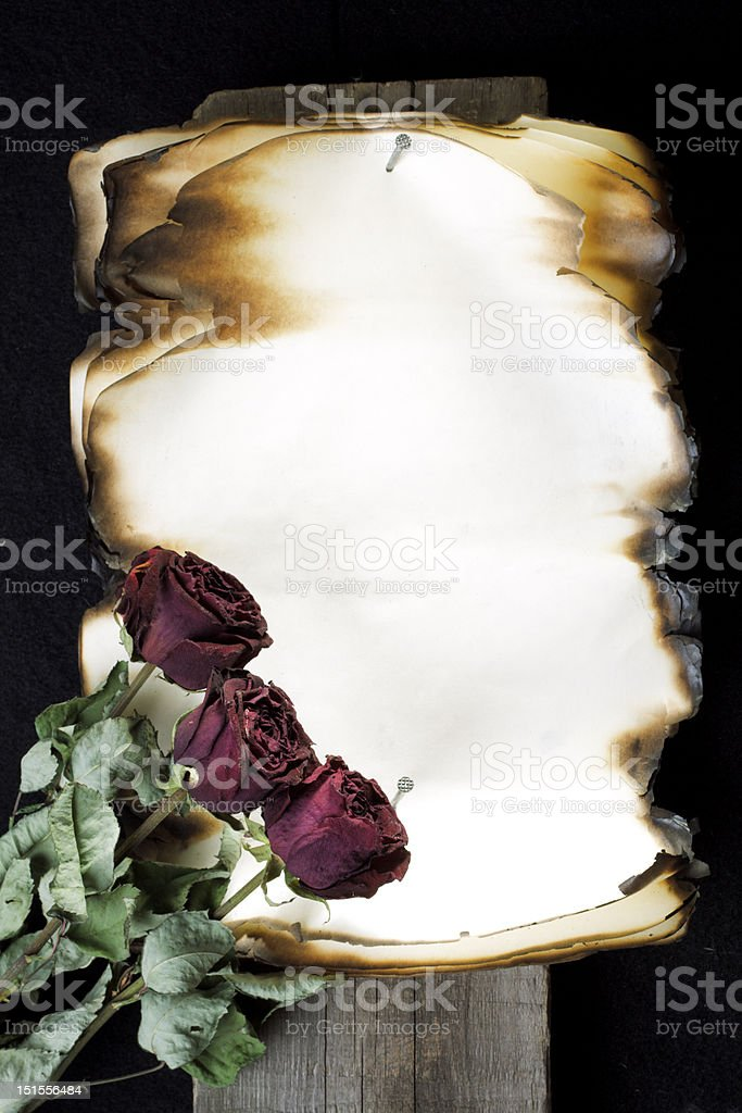 Old note and three roses royalty-free stock photo
