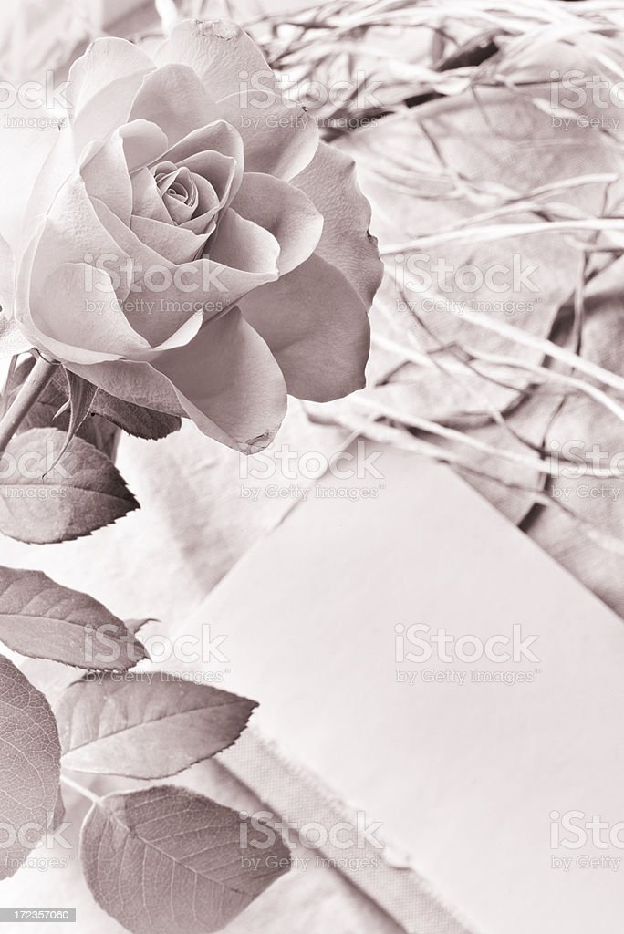 Old Notebook and rose royalty-free stock photo