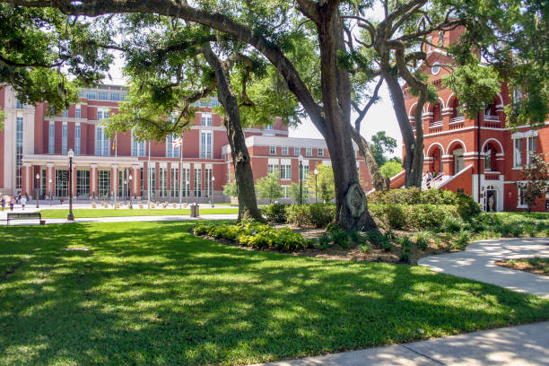 Old Oak Trees cover the beautifully landscaped Osceola County Courthouse Square where the historic 1889 and modern 1999 courthouses are still being used every week-day in Kissimmee, (Osceola County) Florida