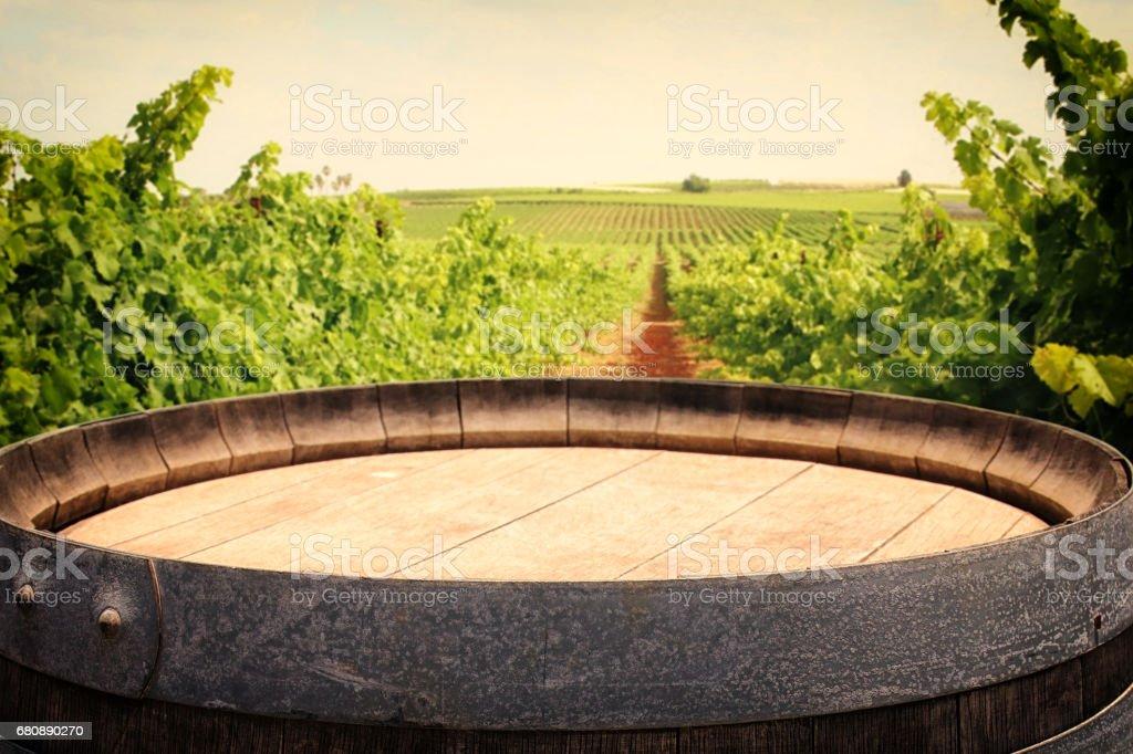 old oak wine barrel in front of wine yard landscape royalty-free stock photo