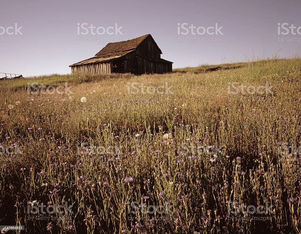 Old Oregon Turn of the Century Barn royalty-free stock photo