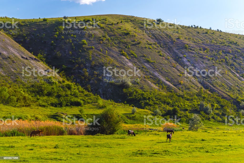 Old Orhei (Vechi) famous travel destination in Moldova - Royalty-free Architecture Stock Photo