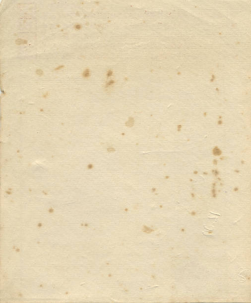 Old Papier – Foto