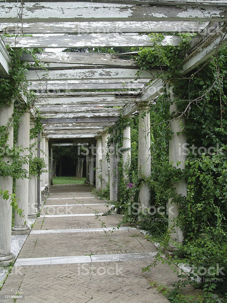 Old Pergola stock photo