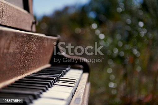 A weathered piano in a clearing of a forest.