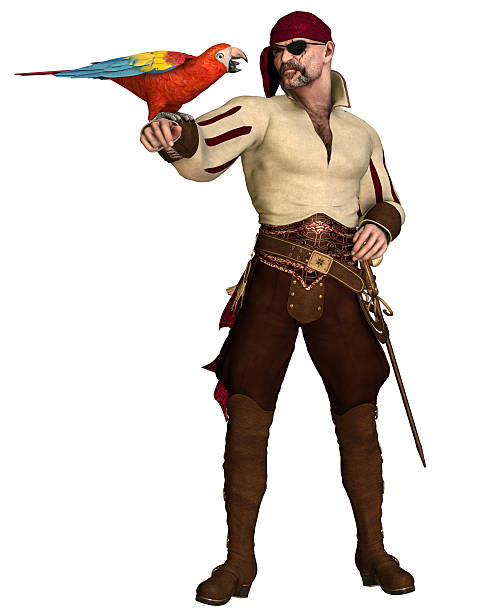 Old Pirate with Parrot stock photo