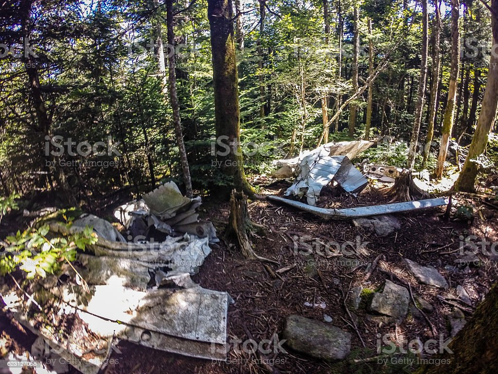 old plane crash slowly dissolves in the forest stock photo