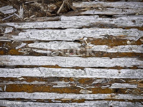 Close-up gray grunge old board wall texture background with moss