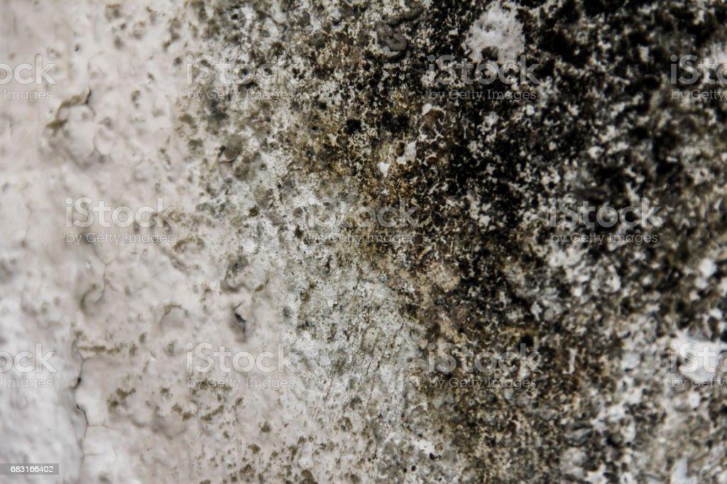 오래 된 벽에 석으십시오. 그런 지 구체적인 텍스처입니다. 레트로 텍스처입니다. 조 난 텍스처입니다. royalty-free 스톡 사진