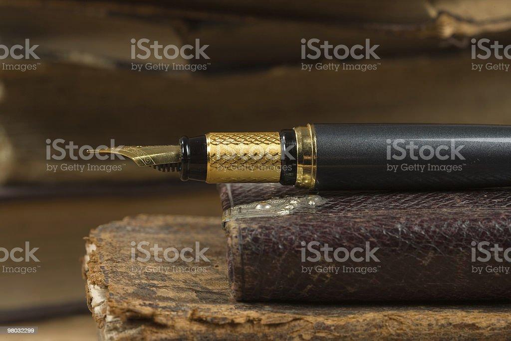 Vecchio libro di poesie e una penna stilografica foto stock royalty-free