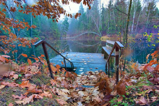 Cтоковое фото Old pond