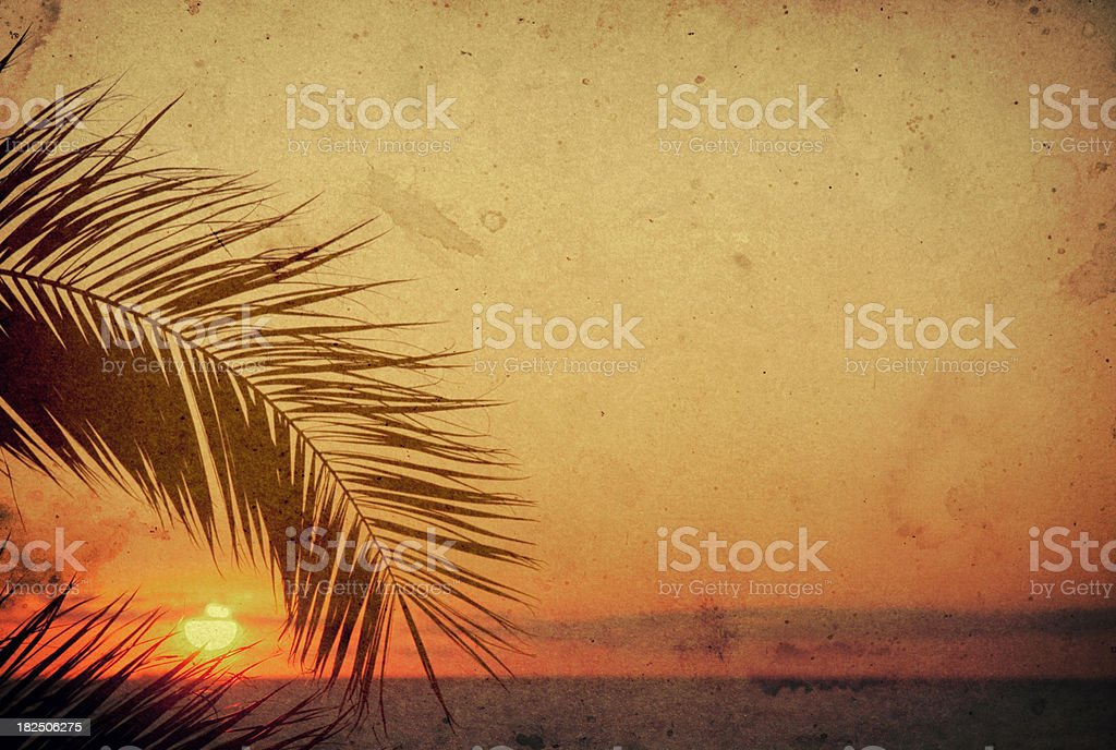 Old postcard, palm tree during sunset stock photo
