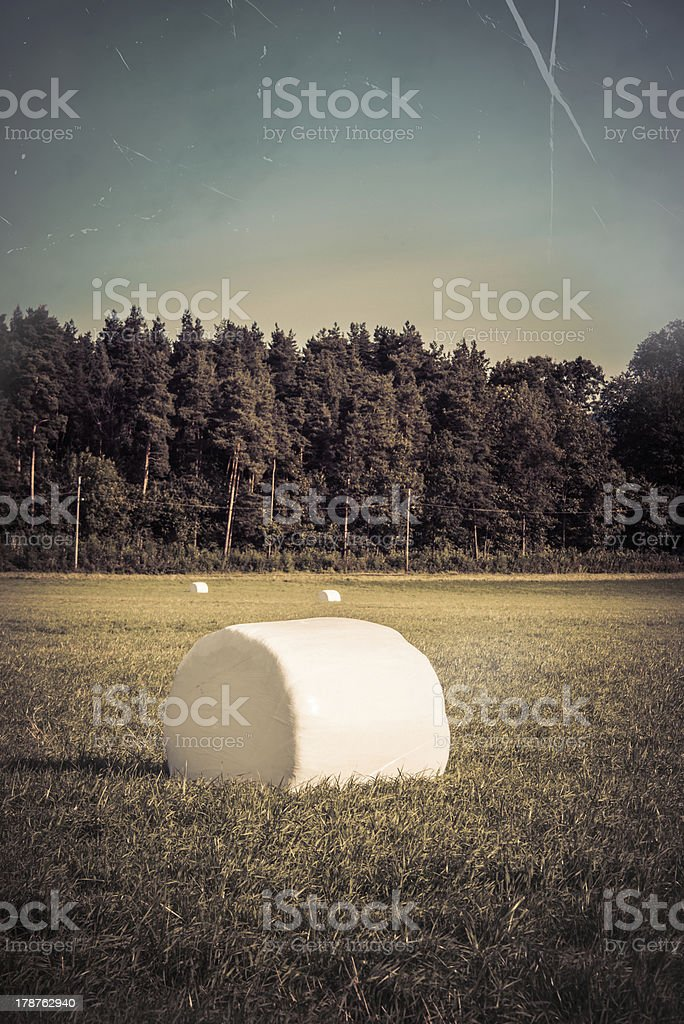 Old print of farm field royalty-free stock photo