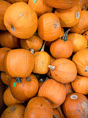 A pile of old pumpkins are for sale after halloween