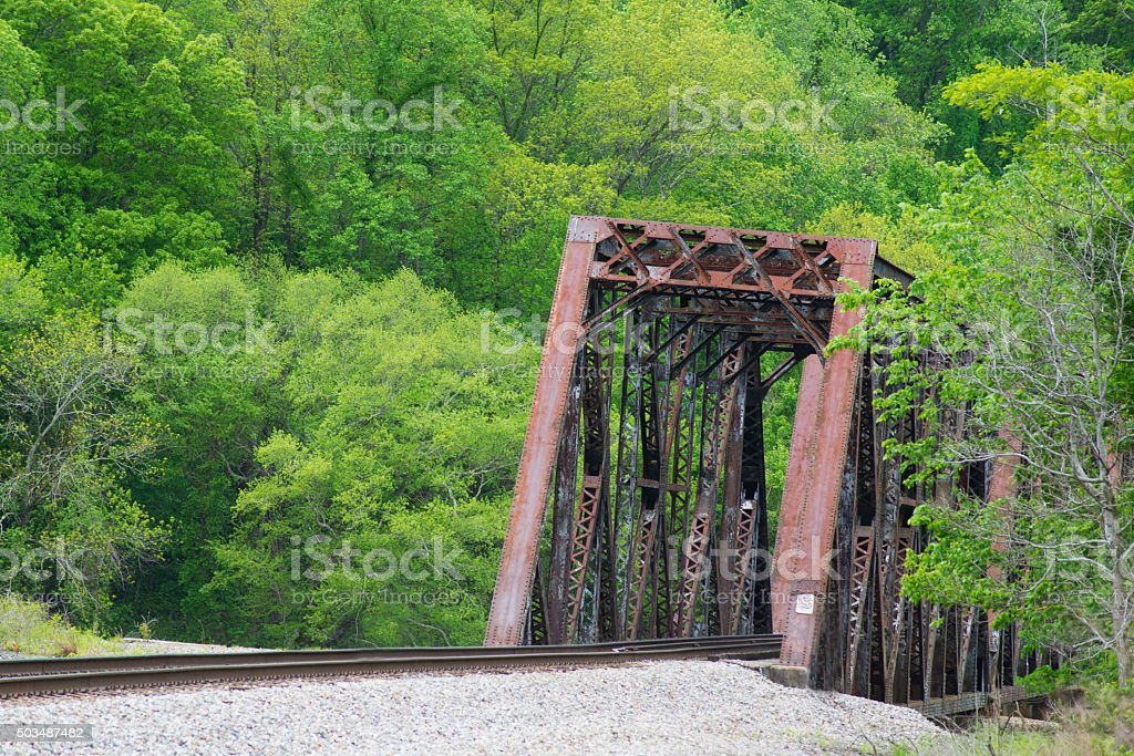 Old railroad tressel surrounded by green forest. stock photo